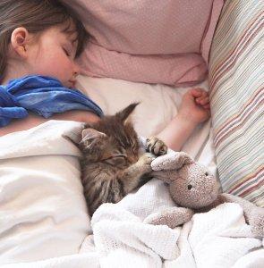 Iris durmiendo con la gatita | Foto: http://irisgracepainting.com/