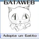 Gataweb Madrid