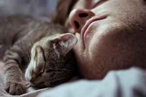 gato-durmiendo-cama-persona