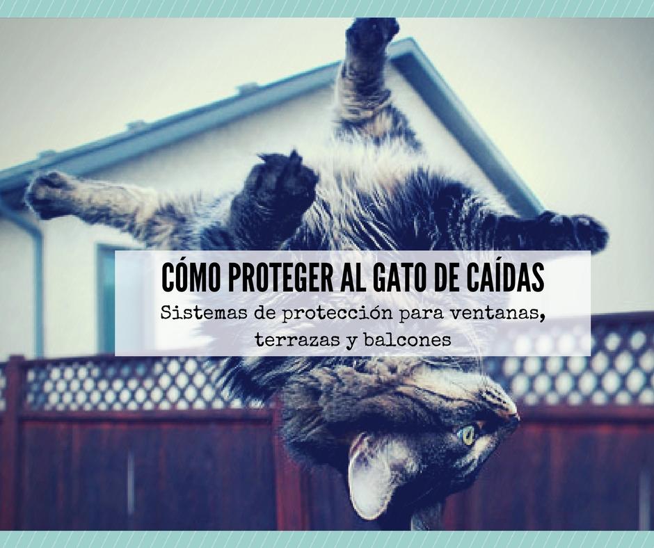 Consejos para proteger al gato de caídas