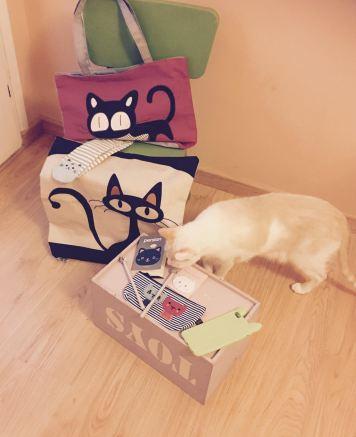 Sorteo Cosas de Gatos pack completo