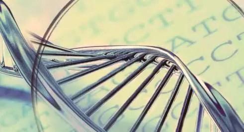 DNA ricerca