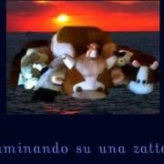 Ruminando_su_una_zattera - Copertina