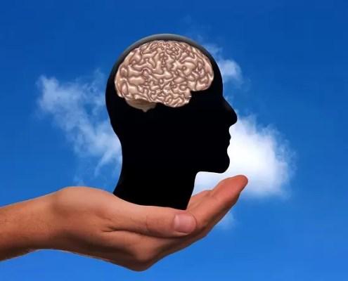 cervello mano