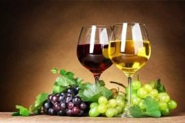 Wine-Food-Festival-ad-Alessandria
