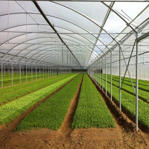 Serre agricole con apertura in gronda
