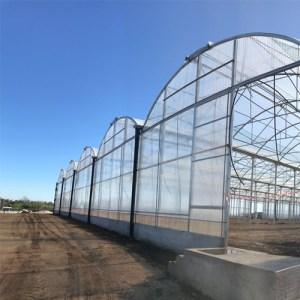 Costruzione serre agricole modulari.