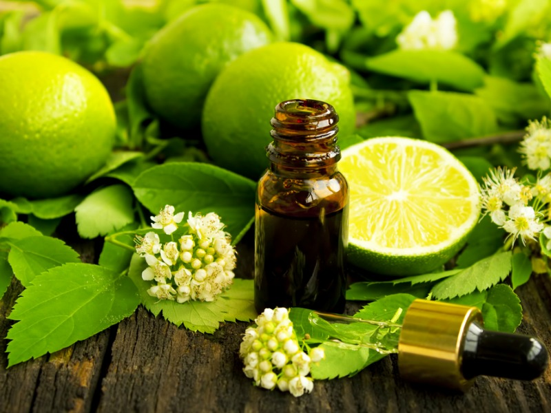 Lime Oil – Aromatherapy Focus