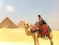 Lisa Egypt Camel