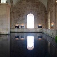 Visita ao Reservatório Mãe d'Água e Exposição de Wim Wenders