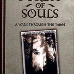 forest of souls rachel pollack
