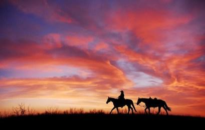 Lonesome Cowboy: gut für die Seele der Verlierer, aber nie real