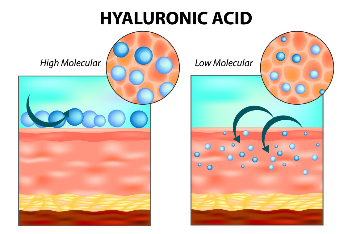 Molecular weight and functionality of hyaluronic acid