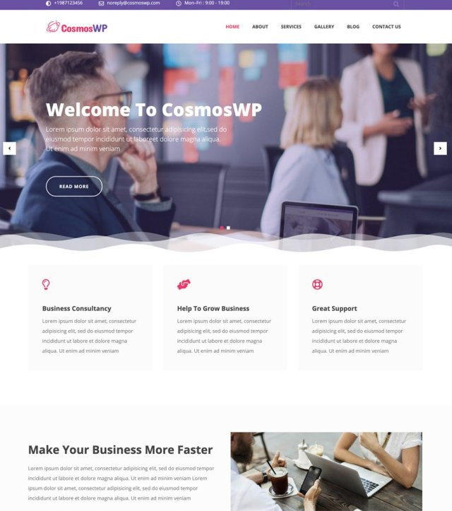 CosmosWP Business V1