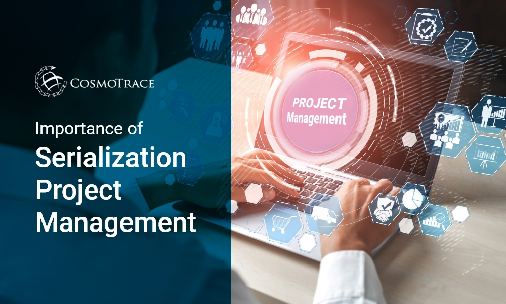 Importance of Serialization Project Management