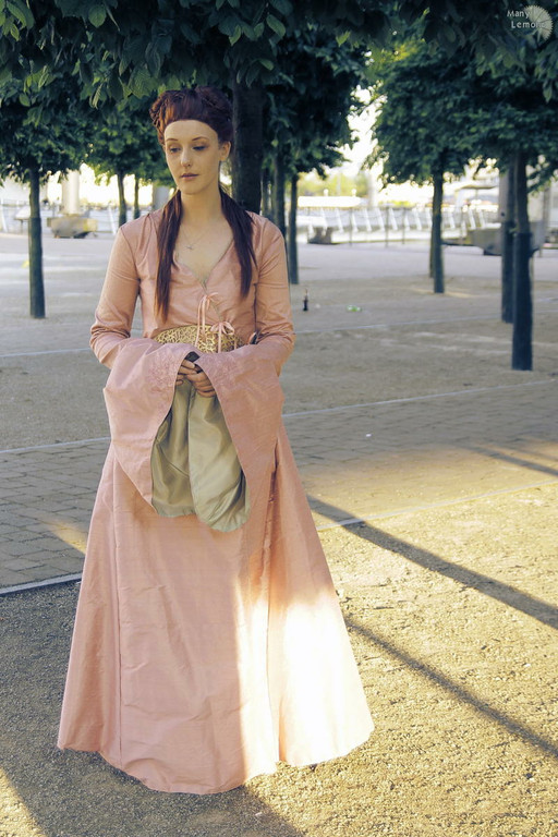 Cosplay Island View Costume Felixize Sansa Stark