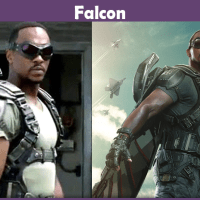 Falcon Costume – A DIY Guide