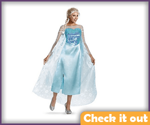 Elsa Costume Complete.