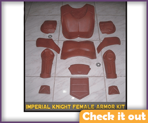 Imperial Knight Women's Armor DIY.