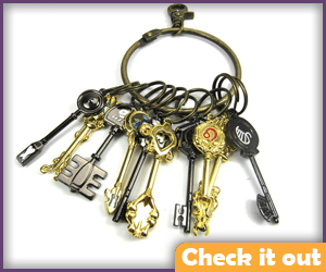 Lucy Heartfilia Golden Zodiac Keys.