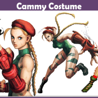 Cammy Costume - A DIY Guide