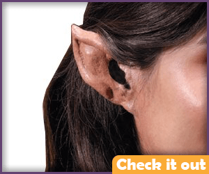 Pointed Ear Kit.