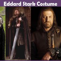 Eddard Stark Costume - A DIY Guide