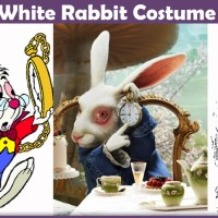 White Rabbit Costume - A DIY Guide