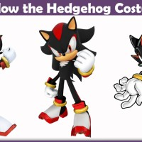Shadow the Hedgehog Costume - A DIY Guide