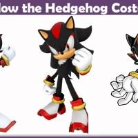 Shadow the Hedgehog Costume - A DIY Guide