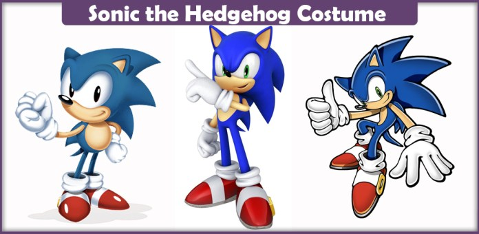 Sonic the Hidgehog Costume