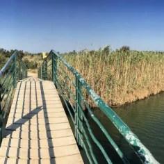 Brücken und Wasserläufe begleiten uns auf dem Weg ins Hinterland