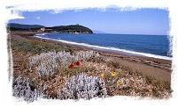 spiaggia san vincenzo