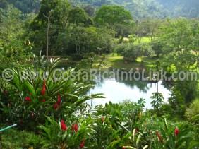 Lake - Rafiki Safari Lodge Hotel Costa Rica