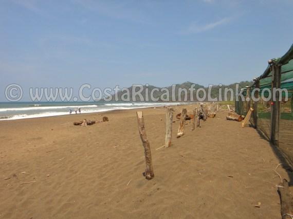 Camaronal Beach Costa RIca