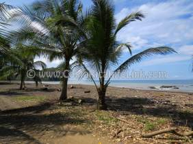 Agujas Beach Costa Rica