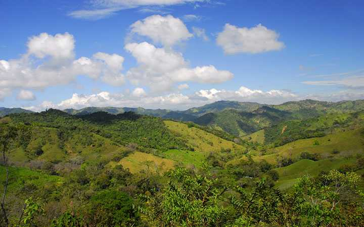 Costa Rica's mountains have some of the world's most beautiful farms