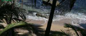 El Arbol Costa Rica