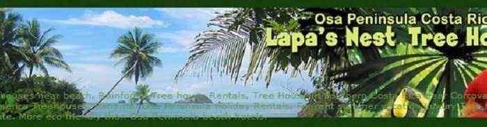 Lapa's Next Tree House