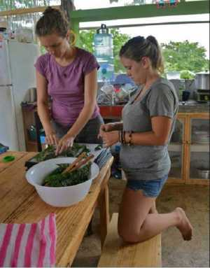 Volunteers Monica and Amanda making kale chips in the volunteer house