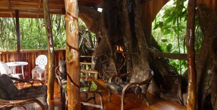 topos-tree-house