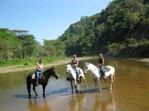 Discovery-Horse-Riding