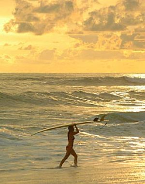 Costa Rica Surf Vacations, Camps, and Tours 2