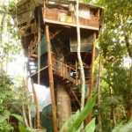Lapa's-Nest-Tree-House