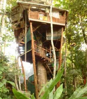 Lapa's-Nest-Tree-House
