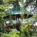 Nature Observatorio