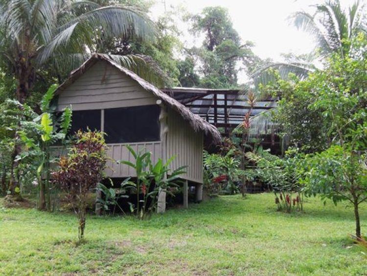 Tamandua Biological Station 1