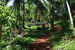 Finca Tierra Organic Permaculture Farm & Eco-Lodge 3