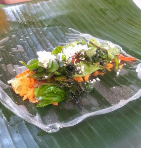 Spring-Roll-from-the-Farm