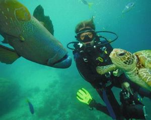 scuba-diving-with-critters-400px